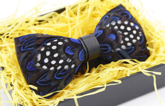 blue-polka-dot-feather-bow-tie-552x353