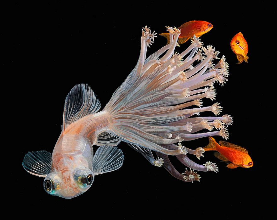 surreal-fish-art-lisa-ericson-4-5859010046636__880