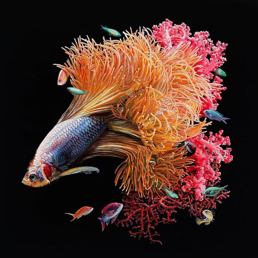 surreal-fish-art-lisa-ericson-8-58590108d3693__880