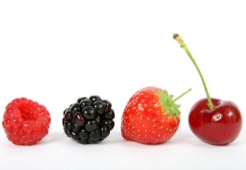 berry-1238249__340