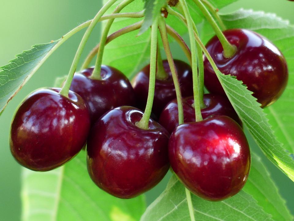 cherry-167341_960_720