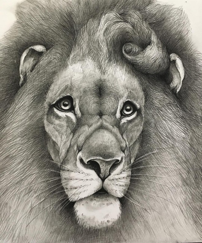 1-lion-funny-drawing-by-adonna-khare.preview (1)