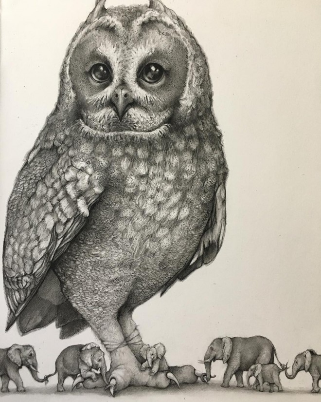 14-owl-funny-drawing-by-adonna-khare.preview
