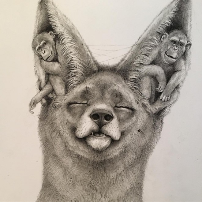 15-fox-funny-drawing-by-adonna-khare.preview