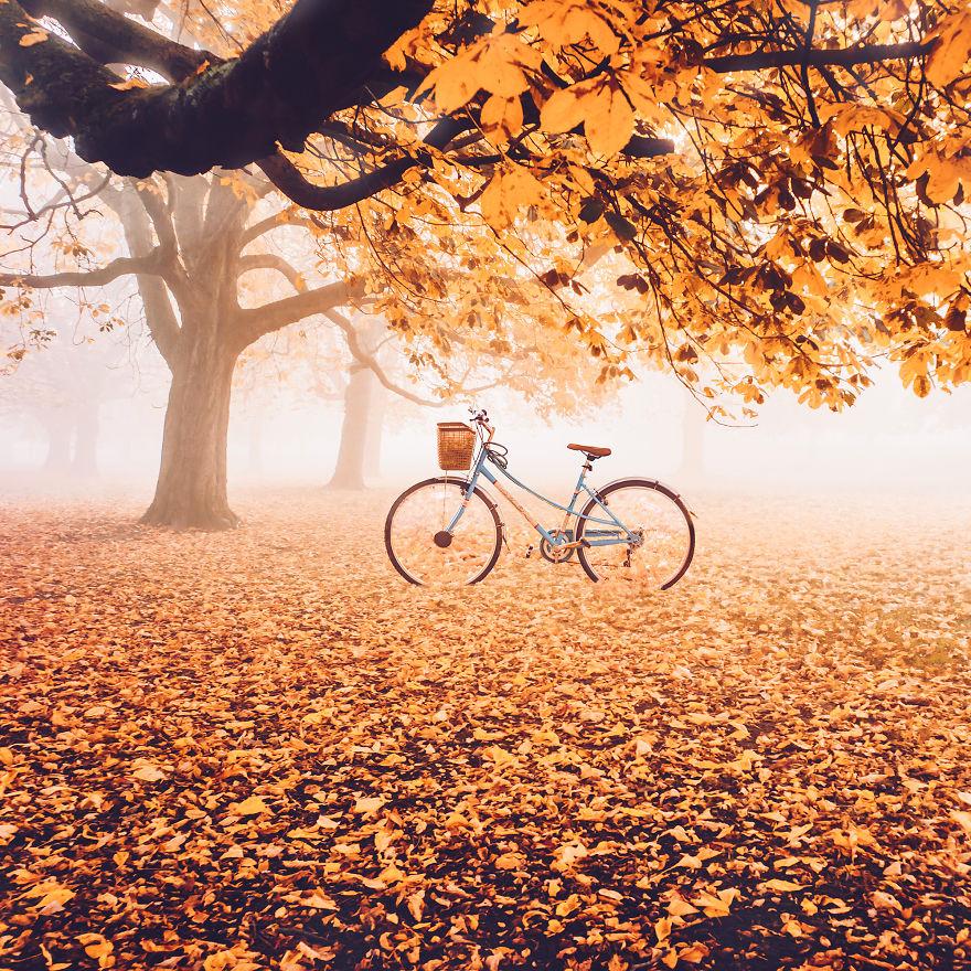 autumn0009-59e7b1e0500c7__880