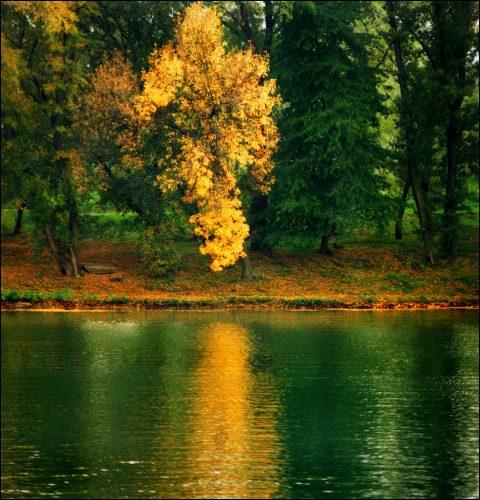 beautiful-landscape-22-photos-18-480x500
