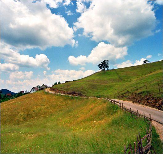 beautiful-landscape-22-photos-3-529x500
