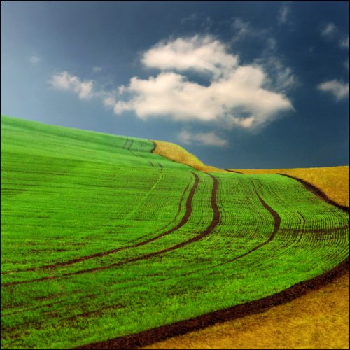 beautiful-landscape-22-photos-5-500x500