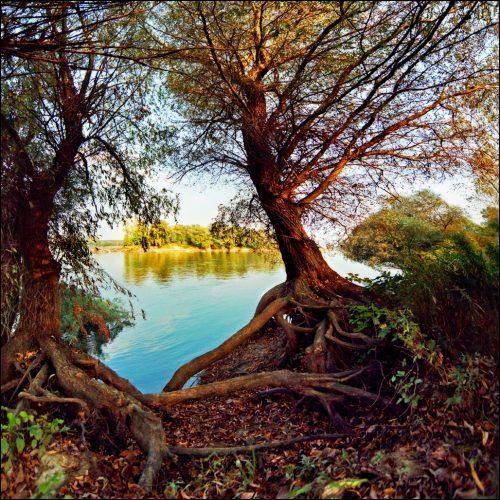 beautiful-landscape-22-photos-6-500x500