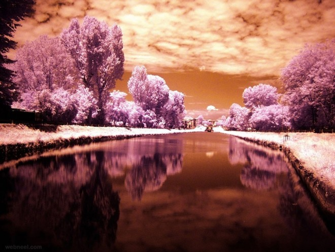 10-infrared-photography.preview