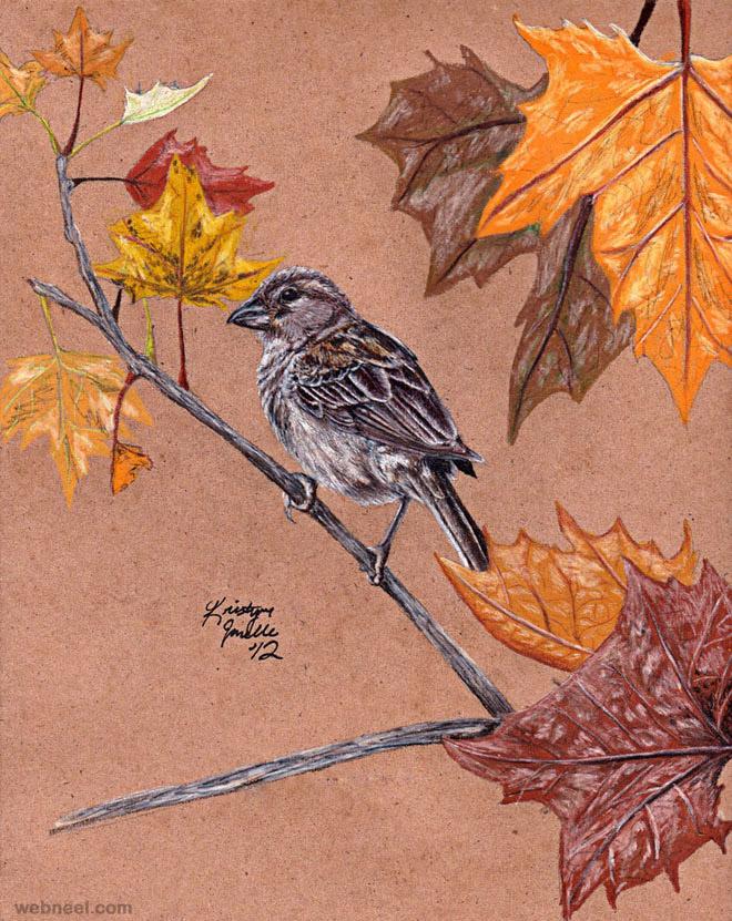 15-bird-drawings