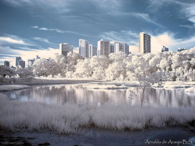 17-infrared-photography.preview