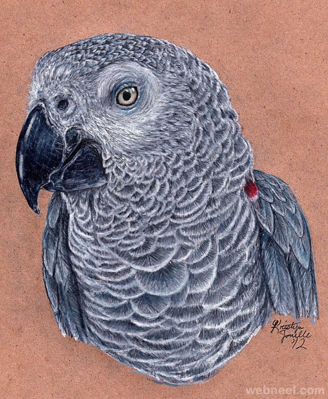 18-bird-drawing