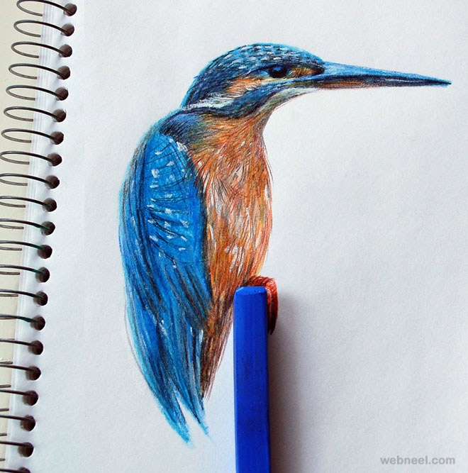 27-birds-art
