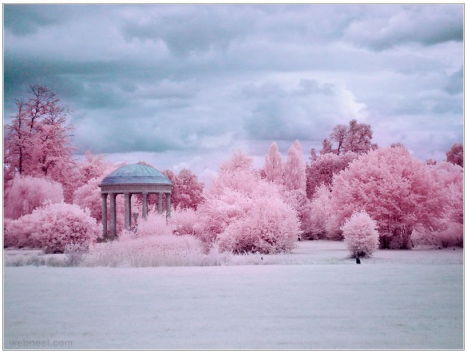 3-infrared-photography.preview