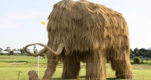9-mammoth-rice-straw-sculpture.preview